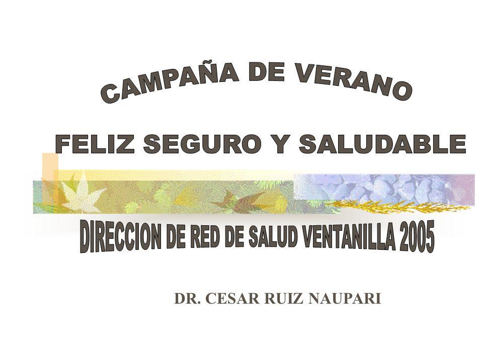 INFORME DE LA CAMPAÑA DE VERANO FELIZ SEGURO Y SALUDABLE DE LA RED VENTANILLA 2005 La dirección de Red de Salud Ventanilla en su rol de promotor y coordinador multisectorial ha elaborado a través del área de Promoción de la Salud y el componente EDA el Plan de trabajo para la ejecución de la Campaña Verano Feliz Seguro y Saludable de la Red de Salud Ventanilla 2005.