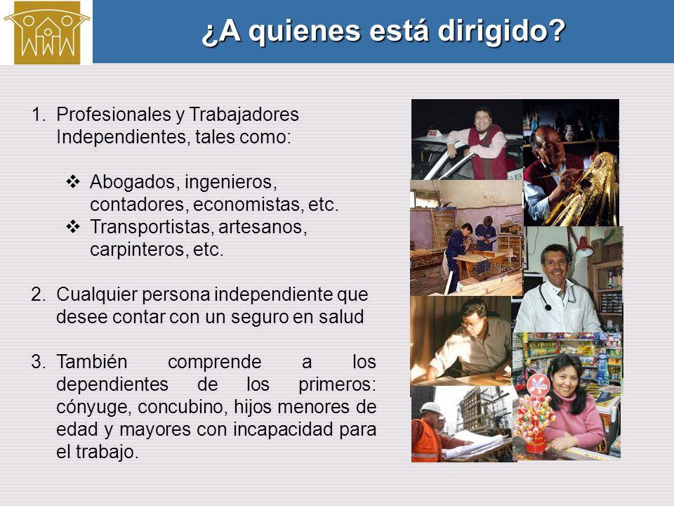 1.Profesionales y Trabajadores Independientes, tales como: Abogados, ingenieros, contadores, economistas, etc.