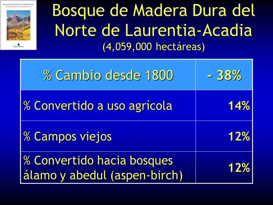Bosque de Madera Dura del Norte de Laurentia-Acadia (4,059,000 hectáreas) % Cambio desde 1800 - 38% % Convertido a uso agrícola 14% % Campos viejos 12