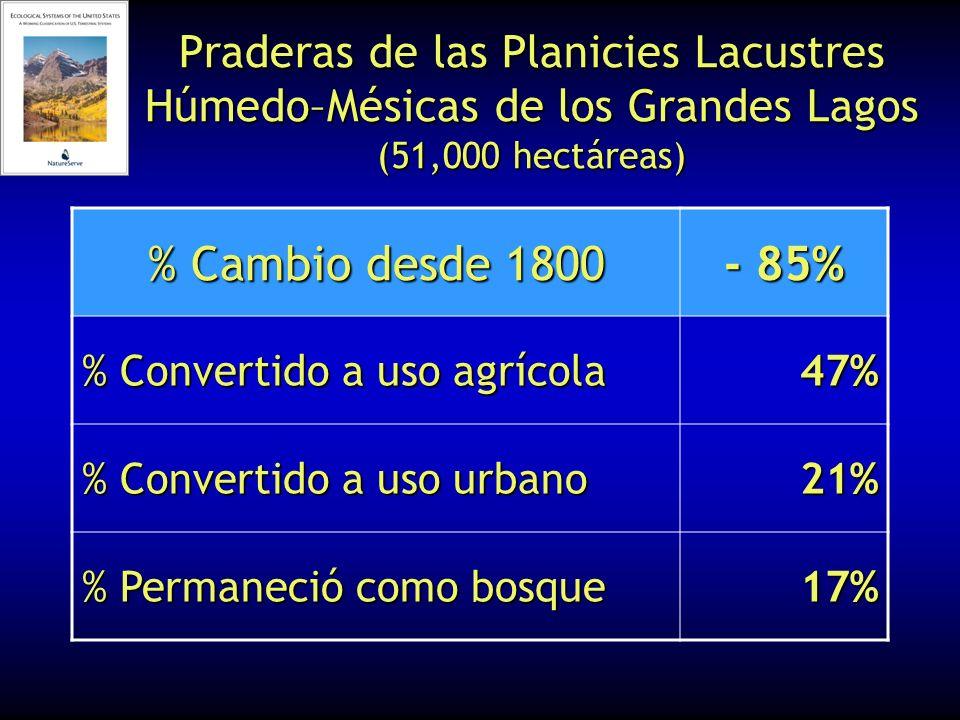 Praderas de las Planicies Lacustres Húmedo–Mésicas de los Grandes Lagos (51,000 hectáreas) % Cambio desde 1800 - 85% % Convertido a uso agrícola 47% %