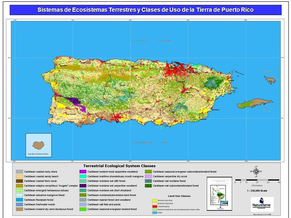 Sistemas de Ecosistemas Terrestres y Clases de Uso de la Tierra de Puerto Rico