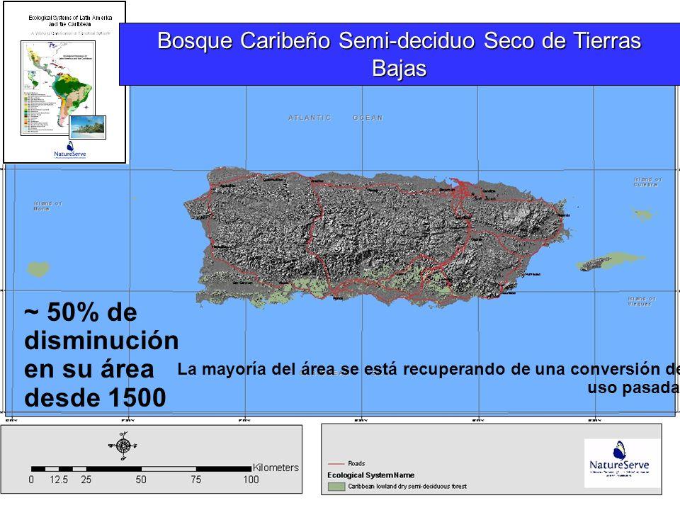 ~ 50% de disminución en su área desde 1500 La mayoría del área se está recuperando de una conversión de uso pasada. Bosque Caribeño Semi-deciduo Seco