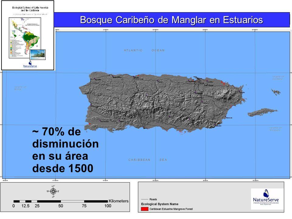 ~ 70% de disminución en su área desde 1500 Bosque Caribeño de Manglar en Estuarios