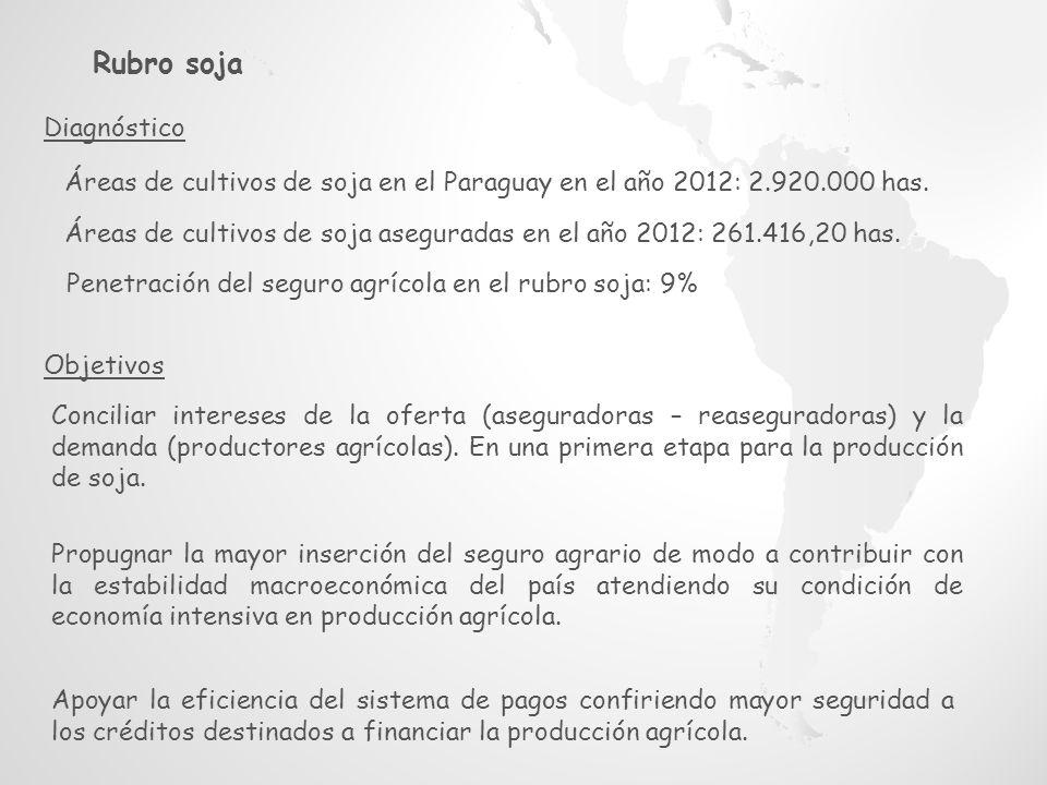 Áreas de cultivos de soja en el Paraguay en el año 2012: 2.920.000 has.