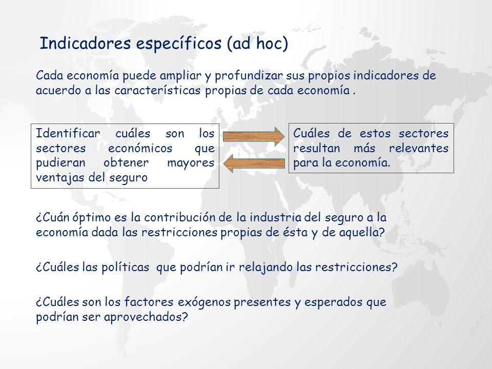 Cada economía puede ampliar y profundizar sus propios indicadores de acuerdo a las características propias de cada economía.