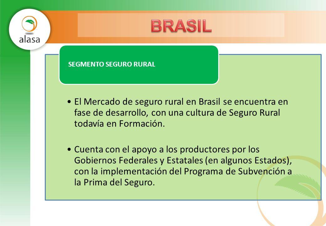 El Mercado de seguro rural en Brasil se encuentra en fase de desarrollo, con una cultura de Seguro Rural todavía en Formación. Cuenta con el apoyo a l