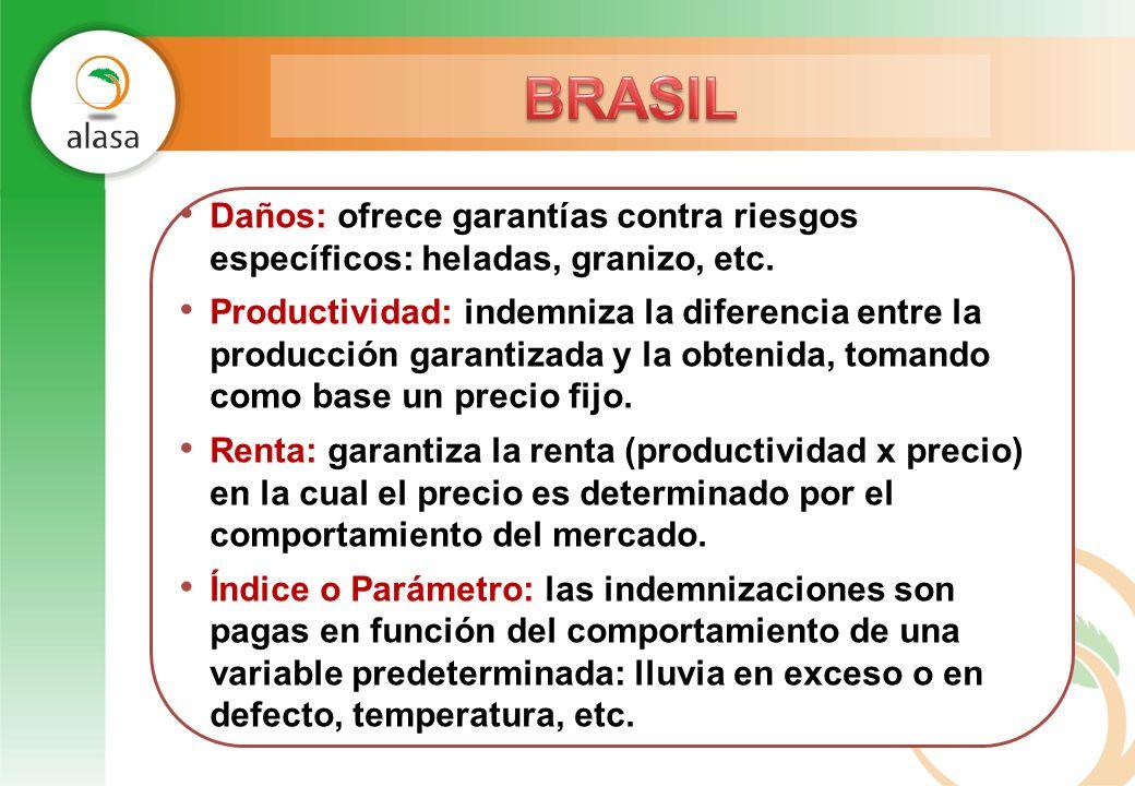 Daños: ofrece garantías contra riesgos específicos: heladas, granizo, etc. Productividad: indemniza la diferencia entre la producción garantizada y la