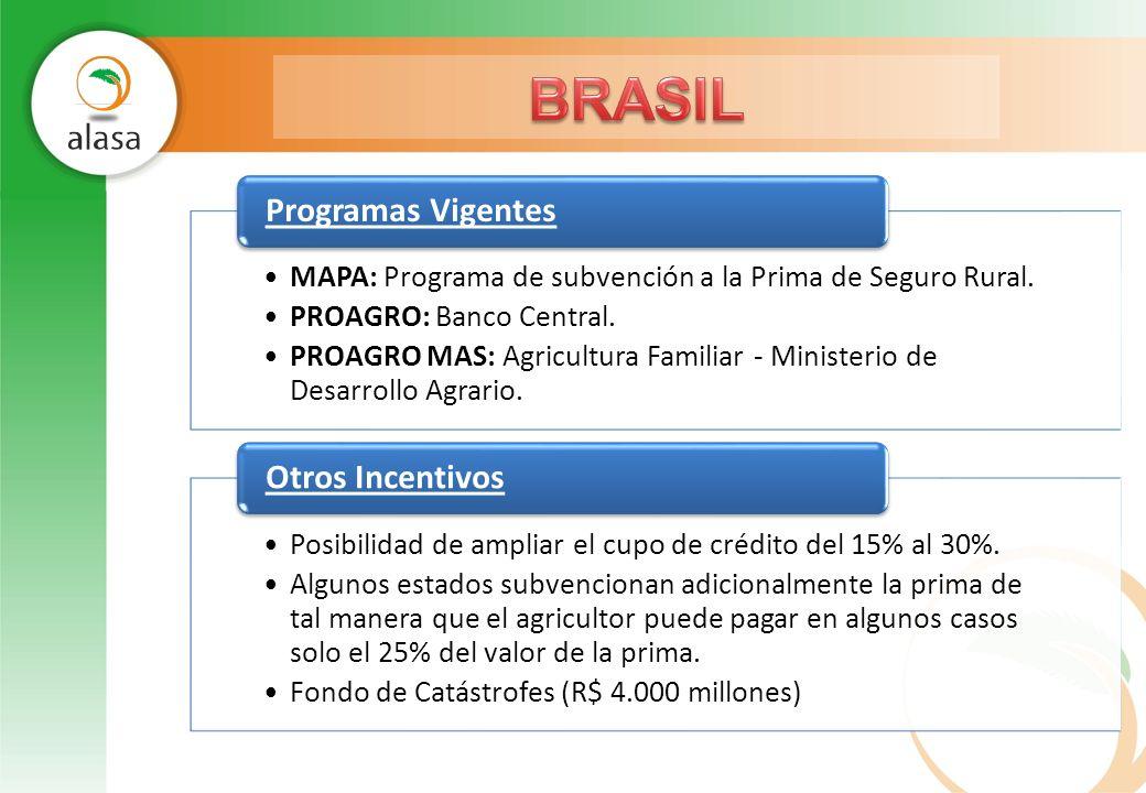 MAPA: Programa de subvención a la Prima de Seguro Rural. PROAGRO: Banco Central. PROAGRO MAS: Agricultura Familiar - Ministerio de Desarrollo Agrario.