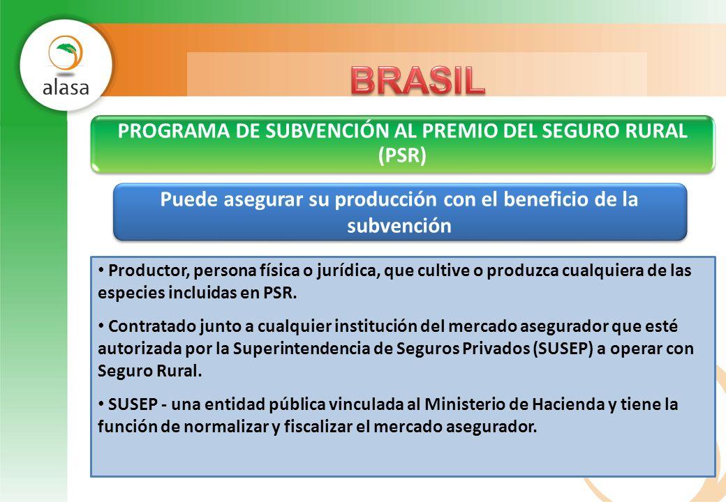 PROGRAMA DE SUBVENCIÓN AL PREMIO DEL SEGURO RURAL (PSR) Puede asegurar su producción con el beneficio de la subvención Productor, persona física o jur