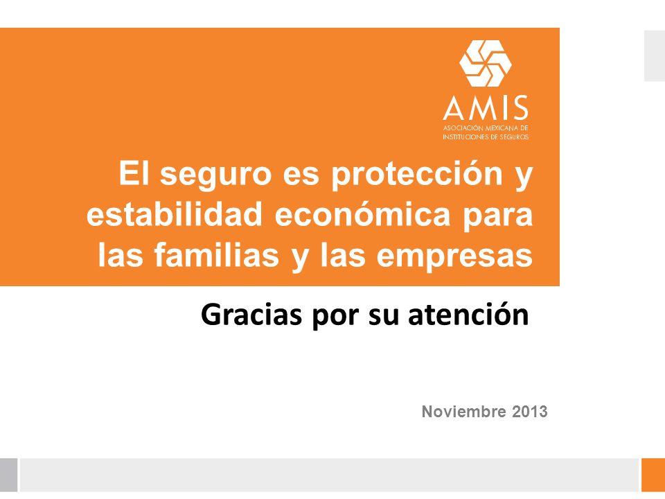 El seguro es protección y estabilidad económica para las familias y las empresas Noviembre 2013 Gracias por su atención