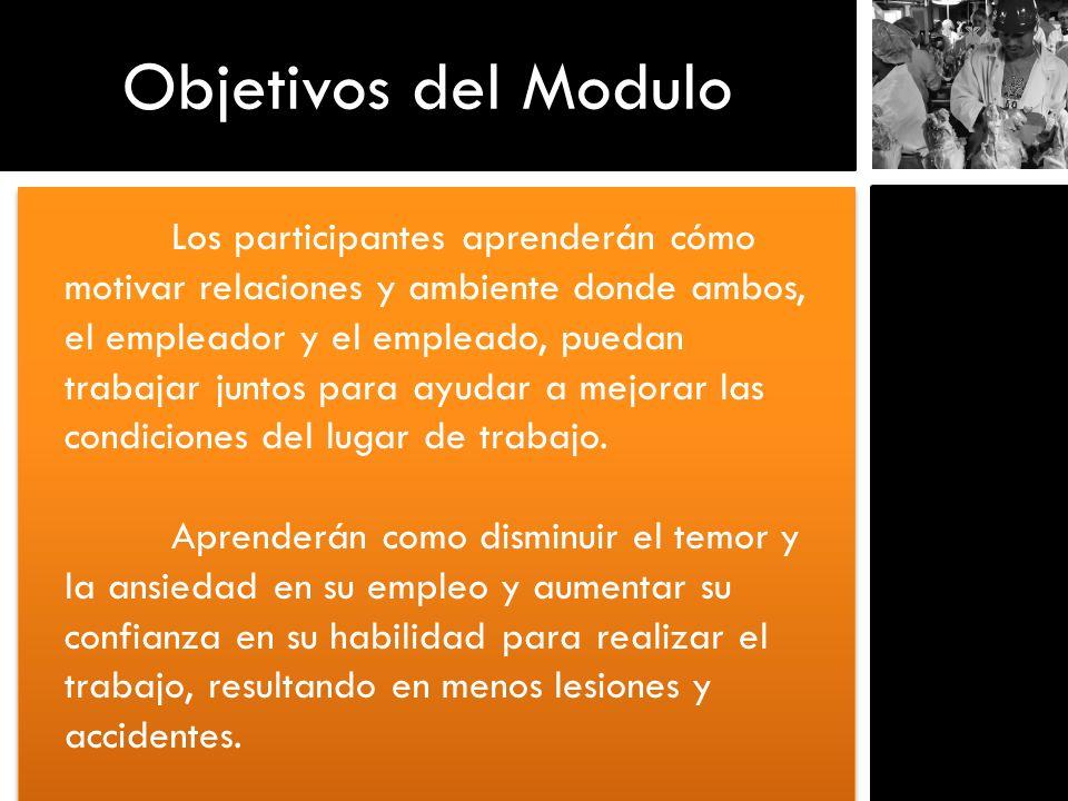 Objetivos del Modulo Los participantes aprenderán cómo motivar relaciones y ambiente donde ambos, el empleador y el empleado, puedan trabajar juntos p