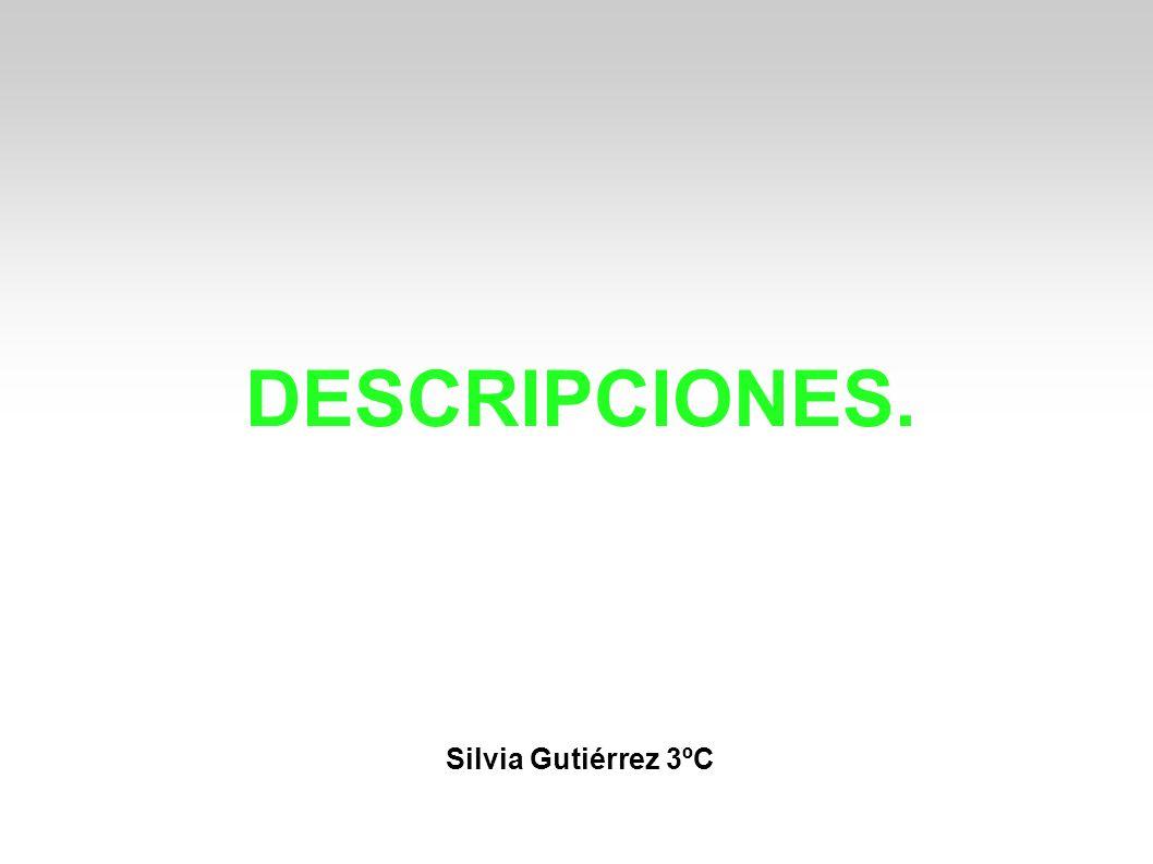 DESCRIPCIONES. Silvia Gutiérrez 3ºC