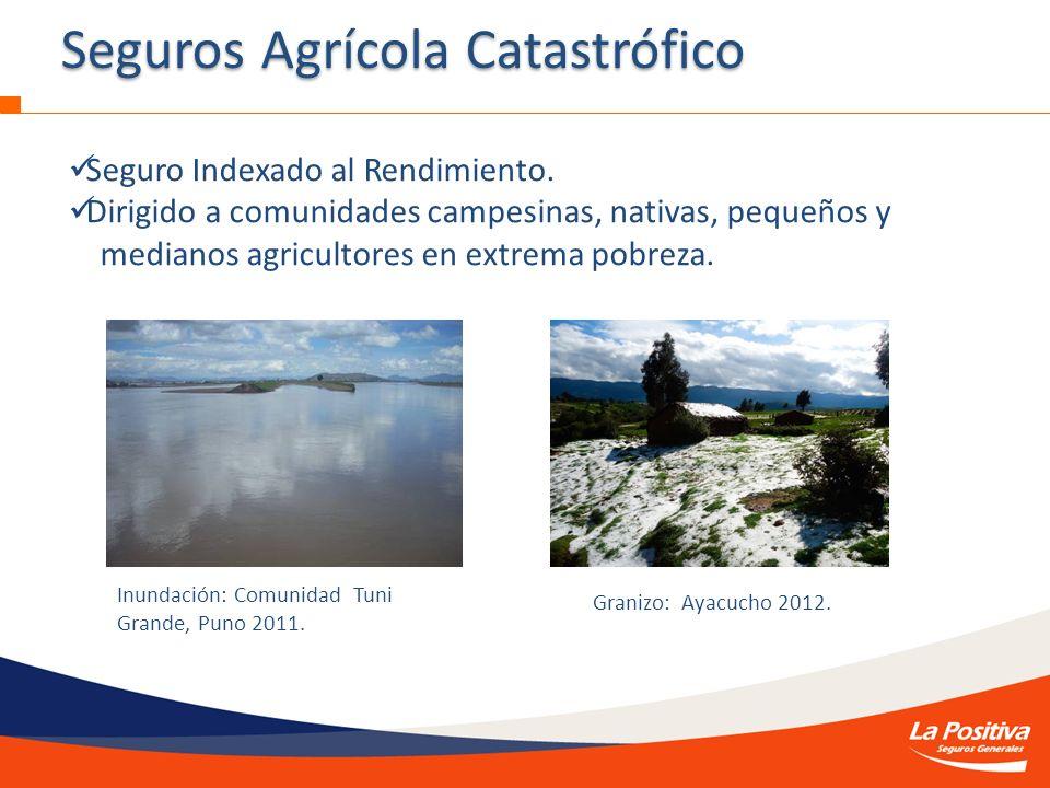 LA POSITIVA SEGUROS Seguro Indexado al Rendimiento. Dirigido a comunidades campesinas, nativas, pequeños y medianos agricultores en extrema pobreza. S