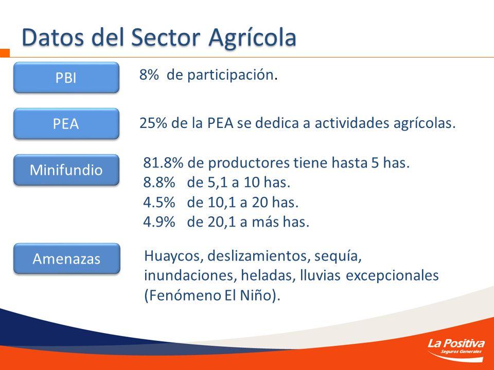 Datos del Sector Agrícola PBI PEA Minifundio 8% de participación. 25% de la PEA se dedica a actividades agrícolas. 81.8% de productores tiene hasta 5
