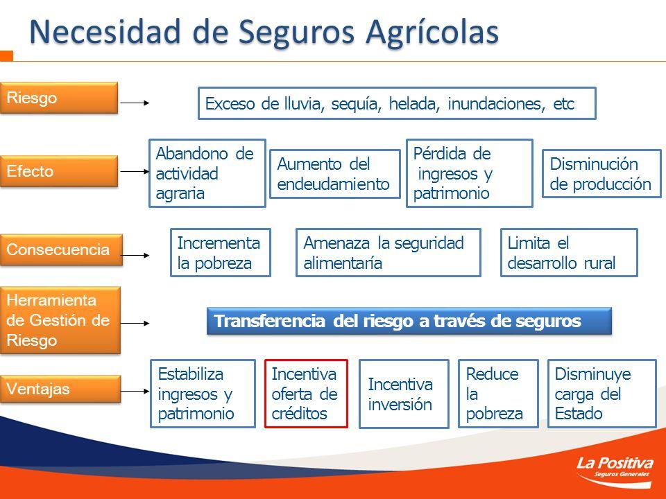 Abandono de actividad agraria Aumento del endeudamiento Pérdida de ingresos y patrimonio Exceso de lluvia, sequía, helada, inundaciones, etc Disminuci