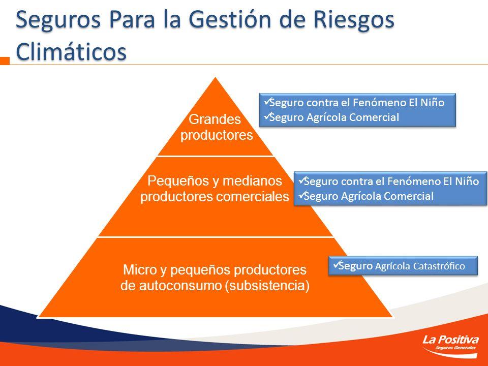Seguros Para la Gestión de Riesgos Climáticos Grandes productores Pequeños y medianos productores comerciales Micro y pequeños productores de autocons