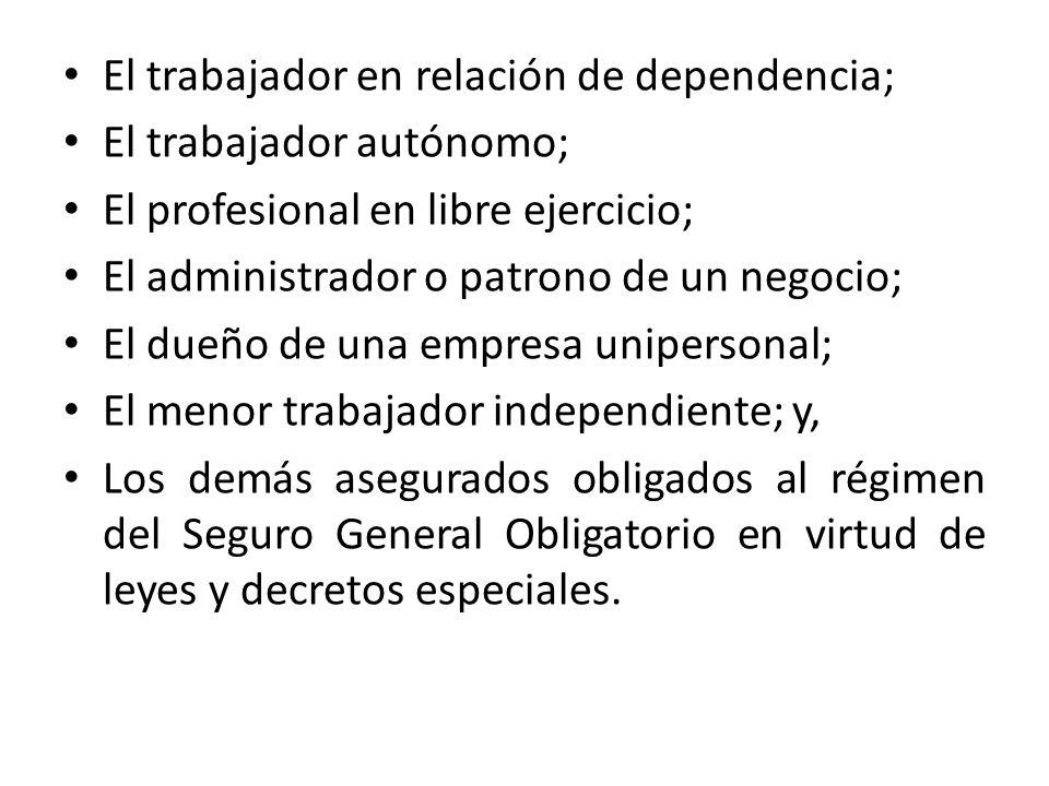 El trabajador en relación de dependencia; El trabajador autónomo; El profesional en libre ejercicio; El administrador o patrono de un negocio; El dueñ