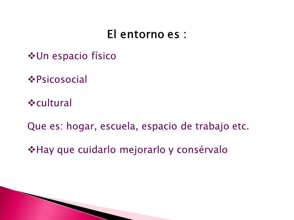 El entorno es : Un espacio físico Psicosocial cultural Que es: hogar, escuela, espacio de trabajo etc.