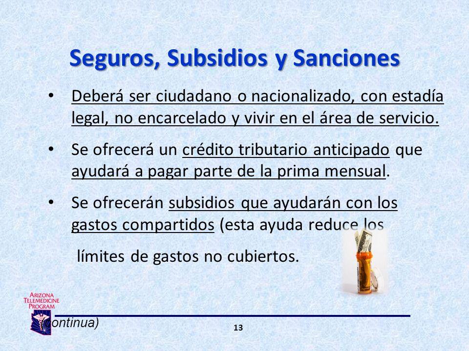 13 Deberá ser ciudadano o nacionalizado, con estadía legal, no encarcelado y vivir en el área de servicio.