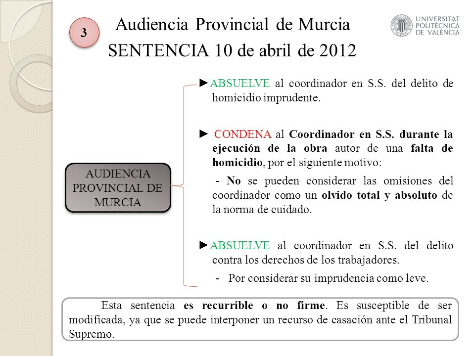 Conclusiones La sentencia de la Audiencia Provincial de Murcia consideró que su imprudencia fue leve, por no considerar un incumplimiento total y absoluto de sus obligaciones en materia de prevención de riesgos laborales.
