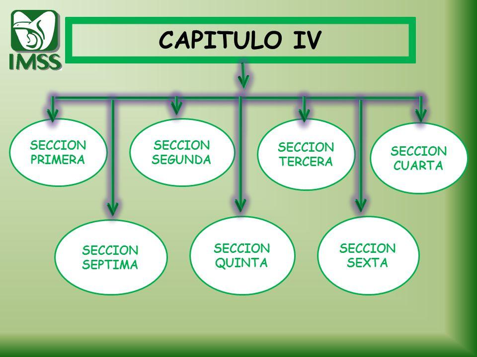CAPITULO IV SECCION PRIMERA SECCION QUINTA SECCION SEXTA SECCION SEPTIMA SECCION SEGUNDA SECCION TERCERA SECCION CUARTA
