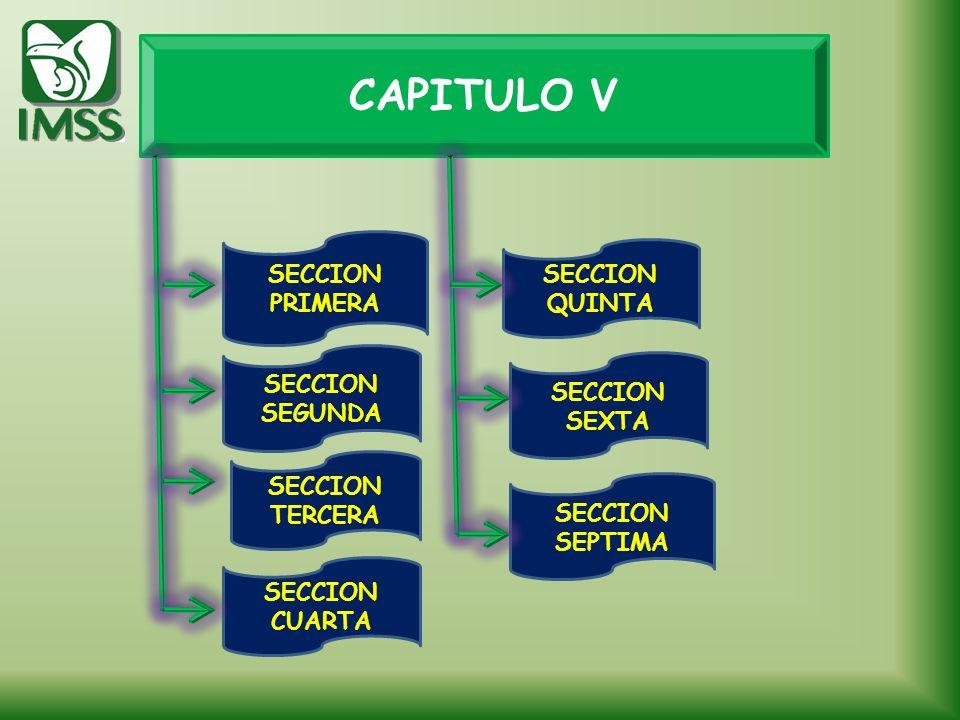 CAPITULO V SECCION SEGUNDA SECCION TERCERA SECCION PRIMERA SECCION SEXTA SECCION QUINTA SECCION SEPTIMA SECCION CUARTA