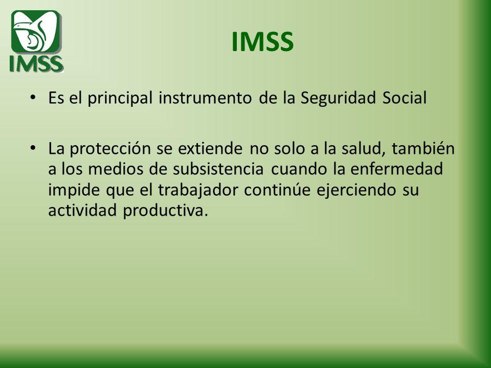 Es el principal instrumento de la Seguridad Social La protección se extiende no solo a la salud, también a los medios de subsistencia cuando la enferm