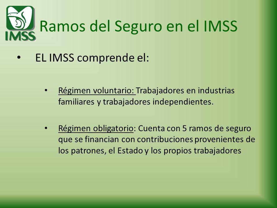 Ramos del Seguro en el IMSS EL IMSS comprende el: Régimen voluntario: Trabajadores en industrias familiares y trabajadores independientes. Régimen obl
