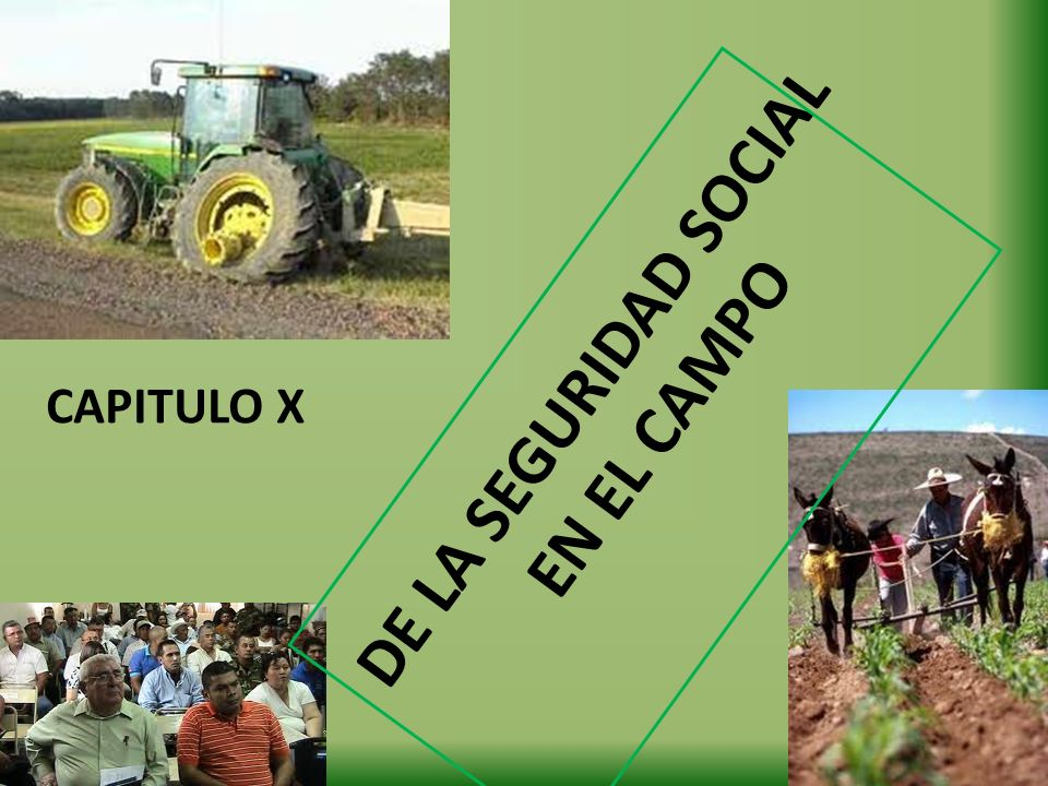 DE LA SEGURIDAD SOCIAL EN EL CAMPO CAPITULO X