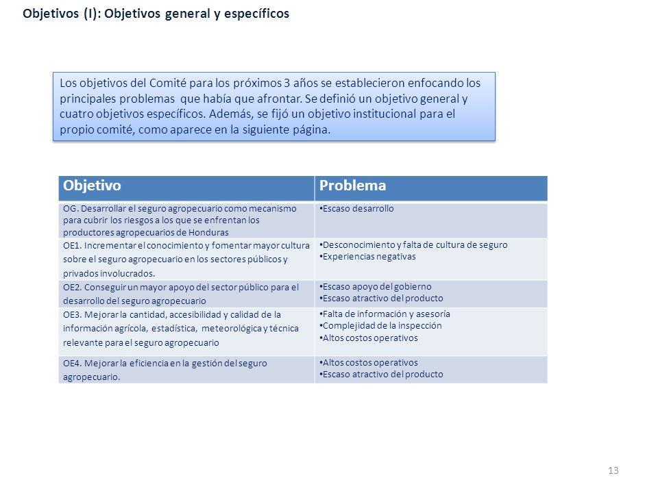 Objetivos (I): Objetivos general y específicos Los objetivos del Comité para los próximos 3 años se establecieron enfocando los principales problemas