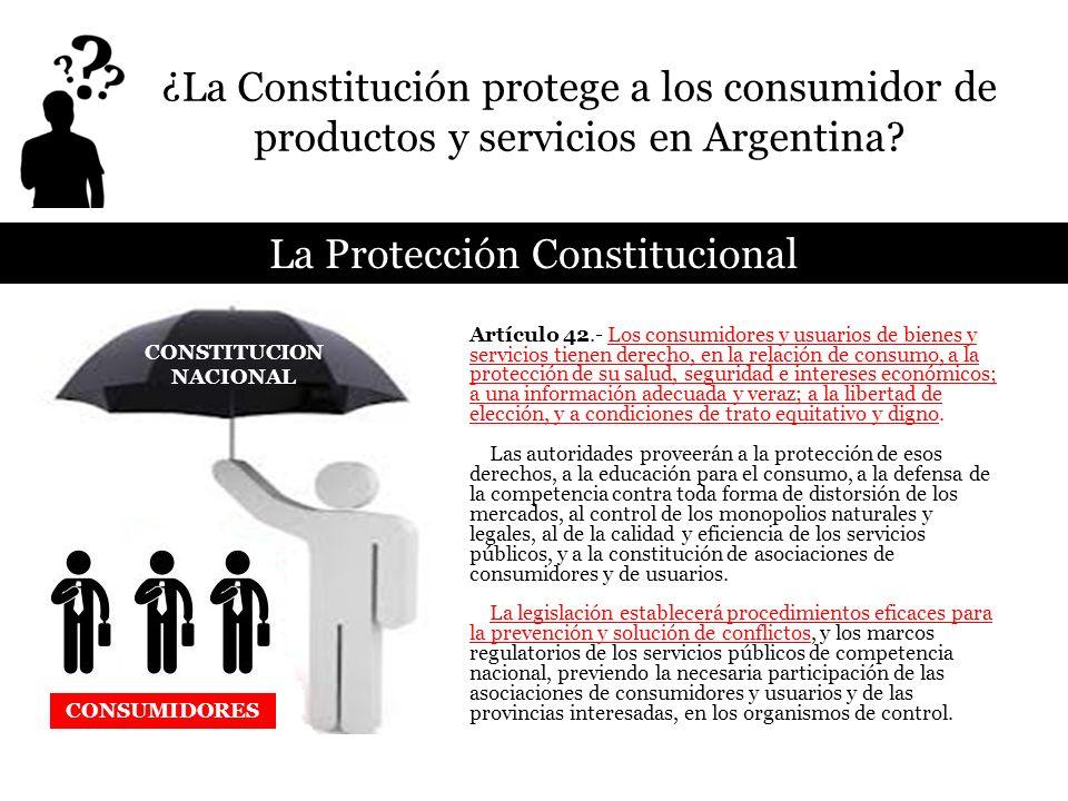 Artículo 42.- Los consumidores y usuarios de bienes y servicios tienen derecho, en la relación de consumo, a la protección de su salud, seguridad e in