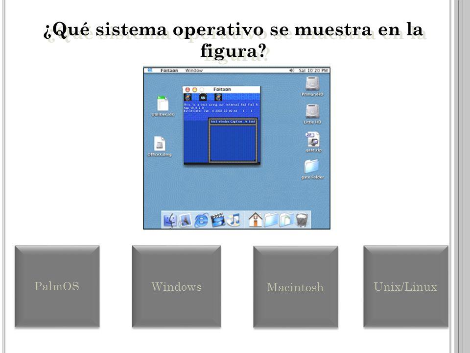 GUI GUI se refiere al diseño de un programa en el cual el usuario maneja los objetos de la pantalla para realizar tareas a través de íconos o gráficos