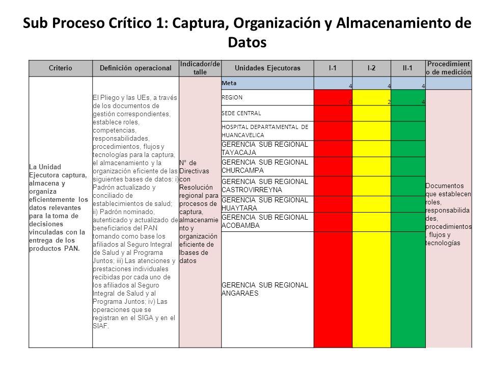 Sub Proceso Crítico 1: Captura, Organización y Almacenamiento de Datos CriterioDefinición operacional Indicador/de talle Unidades EjecutorasI-1I-2II-1 Procedimient o de medición La Unidad Ejecutora captura, almacena y organiza eficientemente los datos relevantes para la toma de decisiones vinculadas con la entrega de los productos PAN.