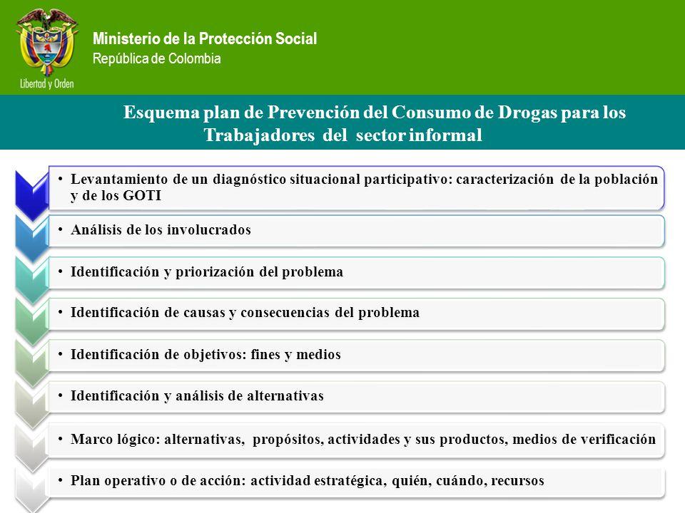 Ministerio de la Protección Social República de Colombia Levantamiento de un diagnóstico situacional participativo: caracterización de la población y
