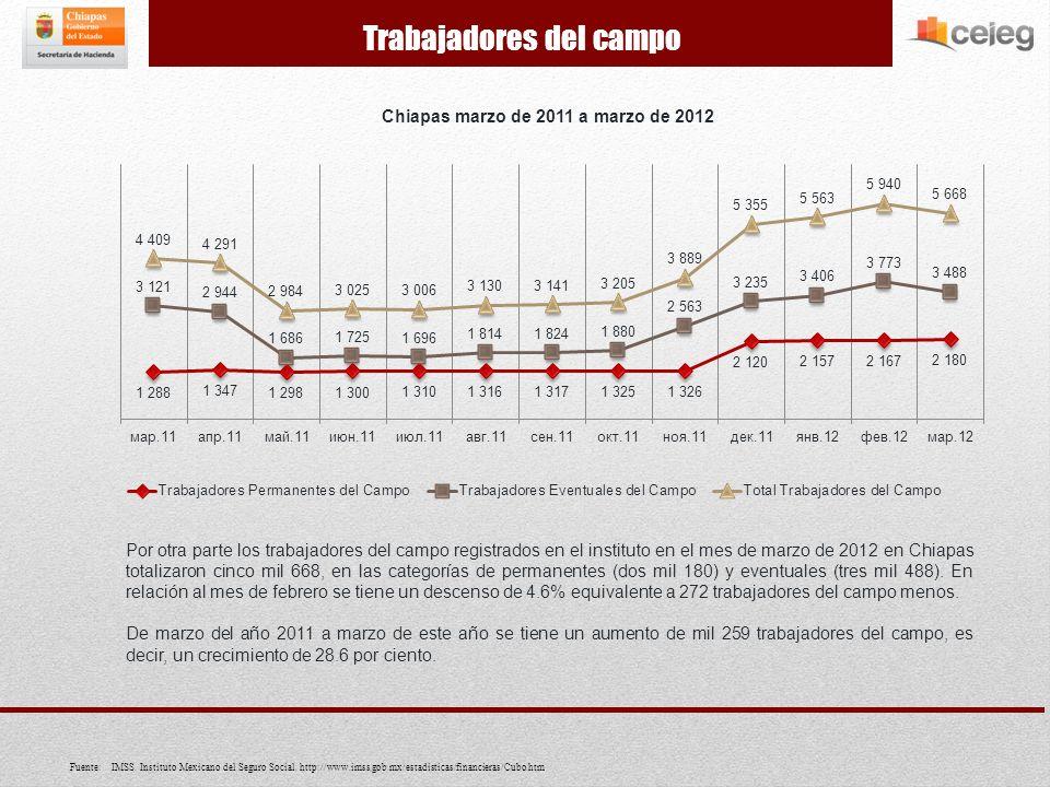 Por otra parte los trabajadores del campo registrados en el instituto en el mes de marzo de 2012 en Chiapas totalizaron cinco mil 668, en las categorías de permanentes (dos mil 180) y eventuales (tres mil 488).