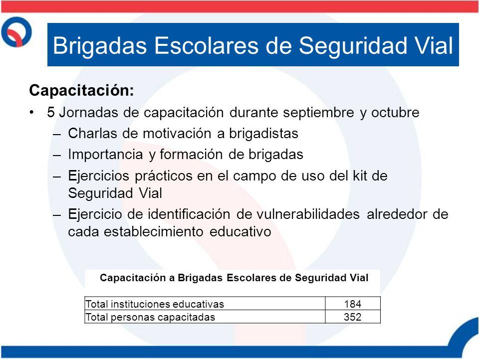 Capacitación: 5 Jornadas de capacitación durante septiembre y octubre –Charlas de motivación a brigadistas –Importancia y formación de brigadas –Ejerc