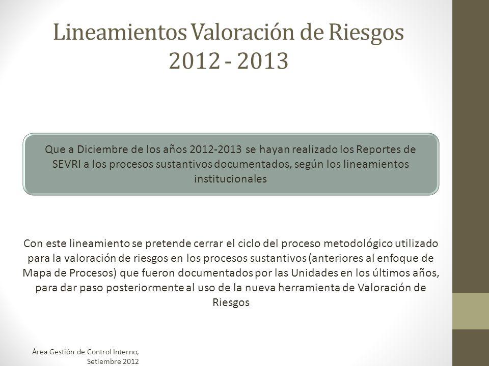 Lineamientos Valoración de Riesgos 2012 - 2013 Que a Diciembre de los años 2012-2013 se hayan realizado los Reportes de SEVRI a los procesos sustantiv