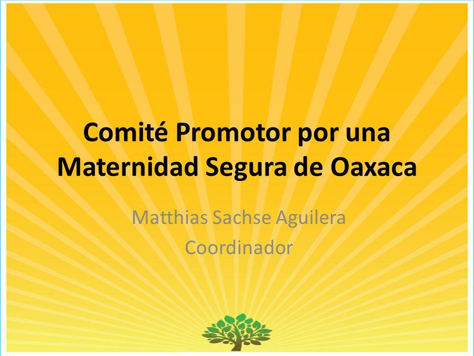Comité Promotor por una Maternidad Segura de Oaxaca Matthias Sachse Aguilera Coordinador