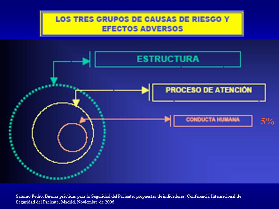 Saturno Pedro. Buenas prácticas para la Seguridad del Paciente: propuestas de indicadores. Conferencia Internacional de Seguridad del Paciente, Madrid
