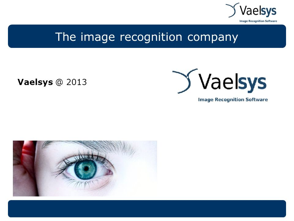 The image recognition company Vaelsys @ 2013
