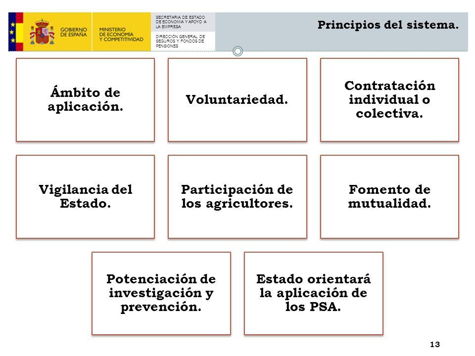 SECRETARIA DE ESTADO DE ECONOMIA Y APOYO A LA EMPRESA DIRECCIÓN GENERAL DE SEGUROS Y FONDOS DE PENSIONES 13 Principios del sistema.