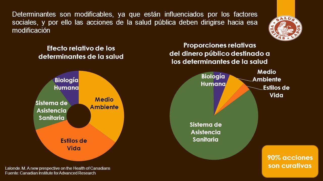 Determinantes son modificables, ya que están influenciados por los factores sociales, y por ello las acciones de la salud pública deben dirigirse hacia esa modificación Lalonde.