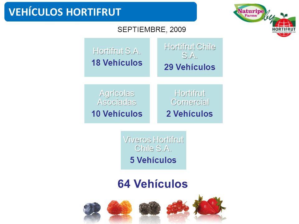 VEHÍCULOS HORTIFRUT Hortifrut S.A. 18 Vehículos Hortifrut Chile S.A. 29 Vehículos Agrícolas Asociadas 10 Vehículos Hortifrut Comercial 2 Vehículos Viv