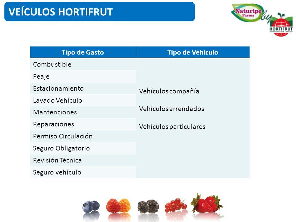 VEÍCULOS HORTIFRUT Tipo de GastoTipo de Vehículo Combustible Vehículos compañía Vehículos arrendados Vehículos particulares Peaje Estacionamiento Lava