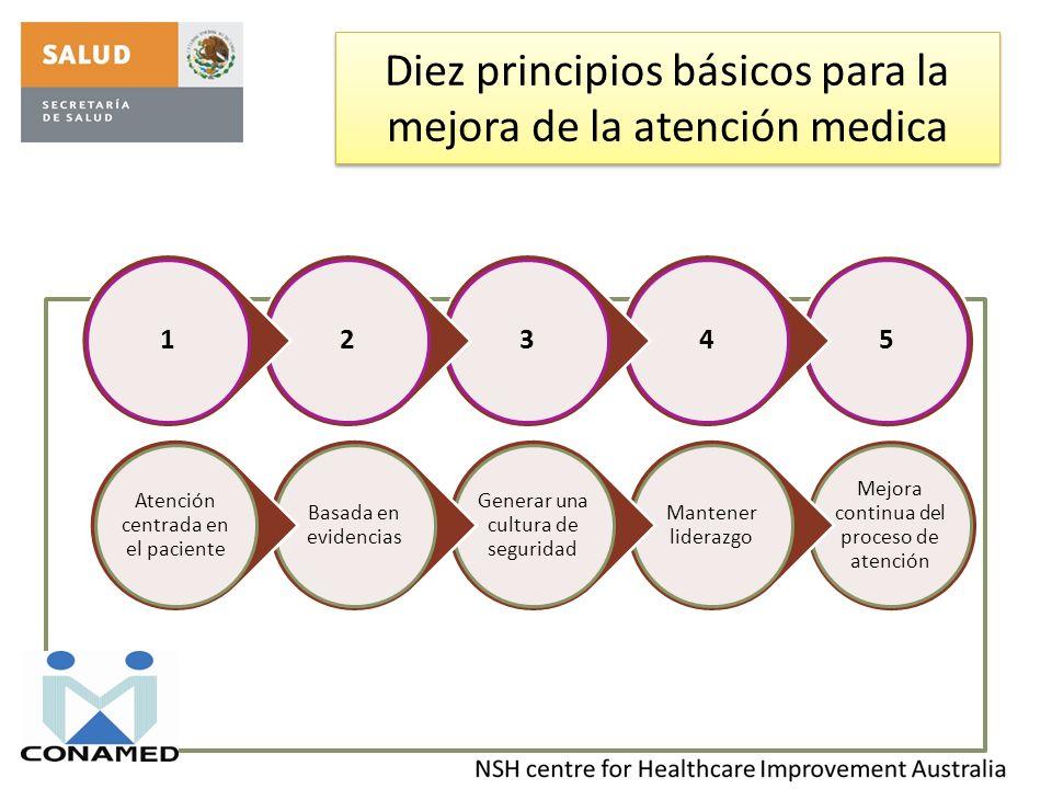 Diez principios básicos para la mejora de la atención medica Mejora continua del proceso de atención Mantener liderazgo Generar una cultura de segurid