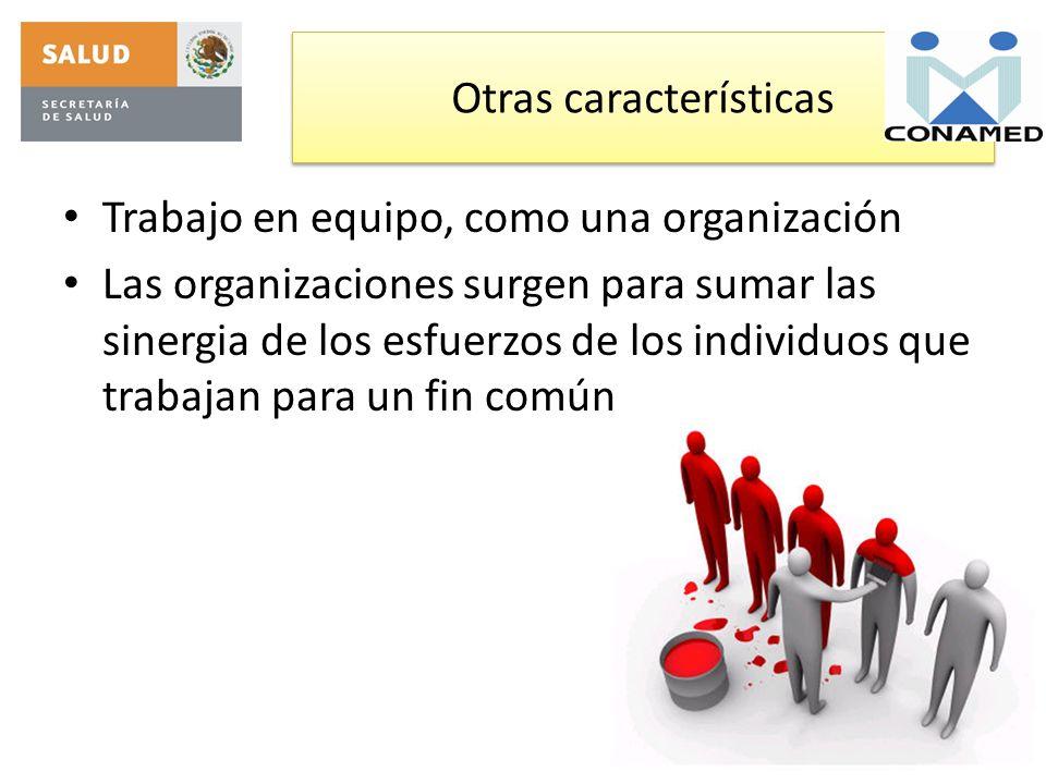 Otras características Trabajo en equipo, como una organización Las organizaciones surgen para sumar las sinergia de los esfuerzos de los individuos qu