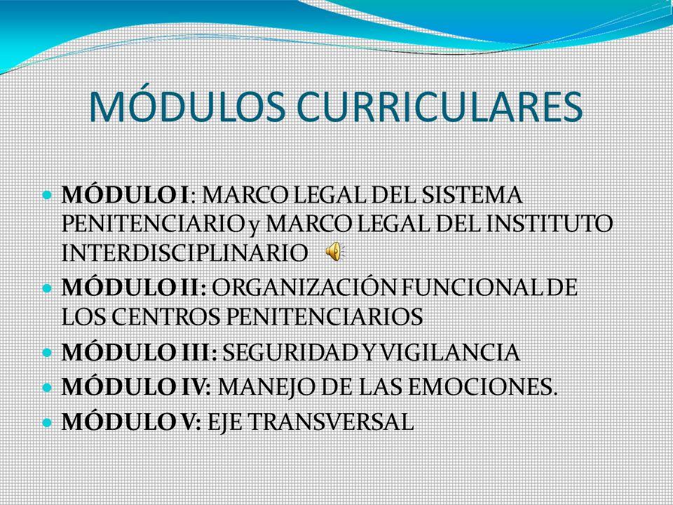 MÓDULOS CURRICULARES MÓDULO I: MARCO LEGAL DEL SISTEMA PENITENCIARIO y MARCO LEGAL DEL INSTITUTO INTERDISCIPLINARIO MÓDULO II: ORGANIZACIÓN FUNCIONAL