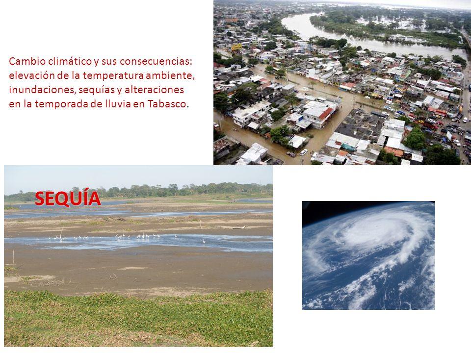 SEQUÍA Cambio climático y sus consecuencias: elevación de la temperatura ambiente, inundaciones, sequías y alteraciones en la temporada de lluvia en T