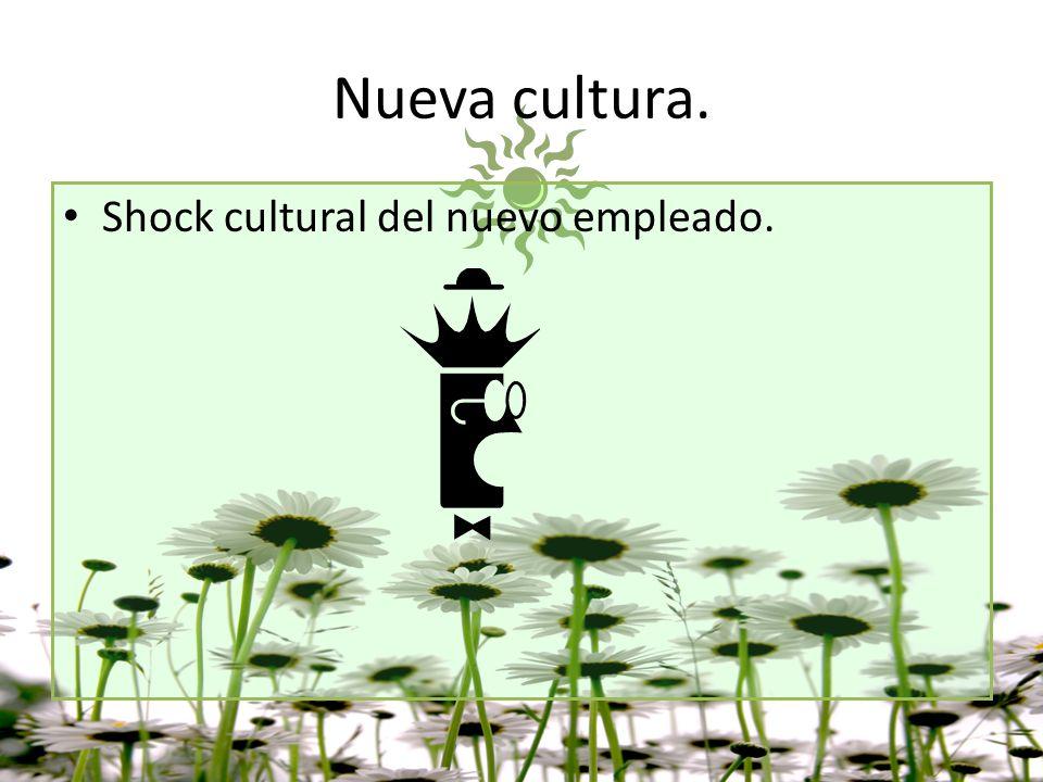 Nueva cultura. Shock cultural del nuevo empleado.