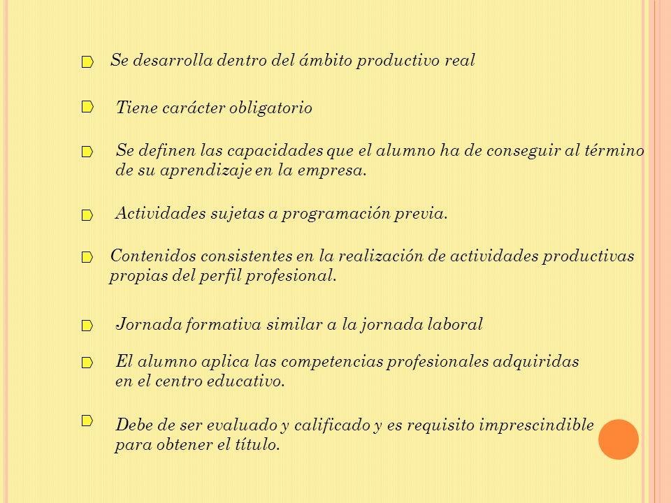 Se desarrolla dentro del ámbito productivo real Tiene carácter obligatorio Se definen las capacidades que el alumno ha de conseguir al término de su a
